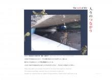 N_YZ-11-01